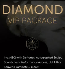Diamond VIP Package
