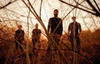 Группа Palms. Фото Travis Shinn.