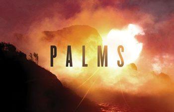 Обложка дебютного альбома Palms