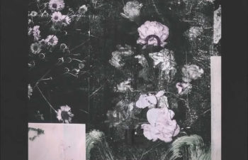 Saudade — «Shadows & Light»
